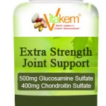 JOINT SUPPORT EXTRA STRENGTH - 500 MG GLUCOSAMINE ...